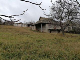 Casa in satul Dolna raionul Strășeni