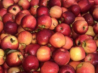Vindem mere florina si idaret pentru piata locală  4 lei și export