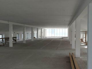 Chirie - 300 m2, 350 m2, 400 m2, 450 m2. Stradela Studentilor 2/4