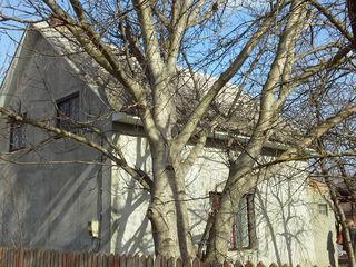 Продается Дача на 12 сотках земли. Капитальный дом в живописном ра-не на краю леса – 500 м Днестр