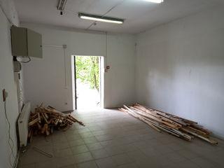 Chirie, spațiu de producere, Ciocana, 84mp, 380€
