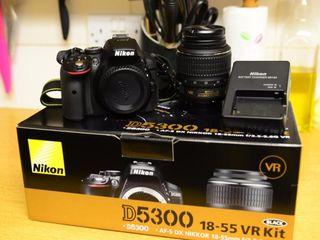 Vand D5300 Kit + 2 obiective (3.5-5.5 + 1.8G) + Flash