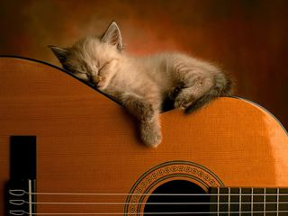 Predau lectii la chitara. Bâlți...уроки игры на гитаре 60 лей бельцы набираю группу на обучение