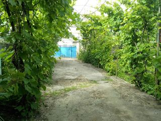 Vinzare / schimb 12 ari + casa  Centrul or. Cricova