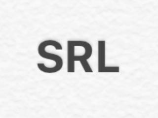 Înființarea SRL .... Acord ajutor