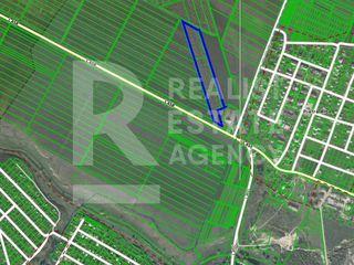 Vânzare, Teren agricol, Ialoveni, 2,5 ha