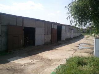 Depozite / Складские помещения, or. Ceadîr-Lunga
