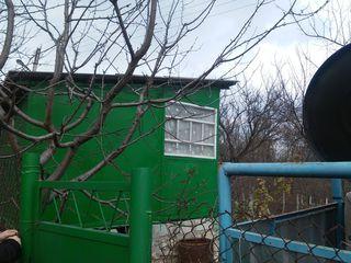 Дачный участок с домиком на окраине Вадул луй Вод. 8 соток. В лесу, недалеко от Днестра.
