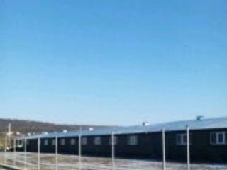 caut  ivestor partner 50 la 50 ferma proizvostvo 15 km de la cihisinau