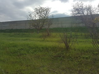 Depozit , stradal, Peresecina , 1150 m.p , 1.75 ha!