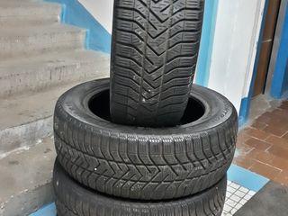 Roti de iarna Pirelli 205/55 R16