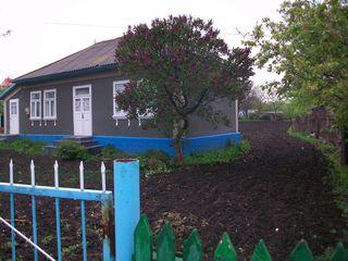 Продается жилой дом в г. Единцы