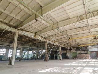 Vânzare, Spațiu Industrial, Spațiu Comercial, r-nul Căușeni 980 000 euro