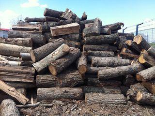 Kumpar 10 skladometri de lemn tare 600 lei Куплю дрова для себя 10  скл дуб ясин акация Lemne