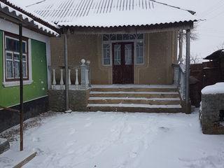 casa de lokuit