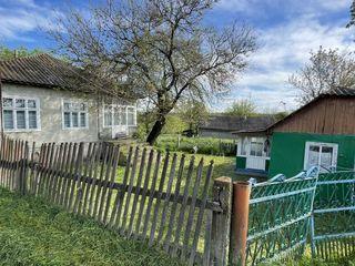 Casa / casa pe pamint