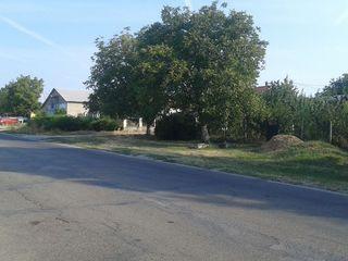 Vind loc de casa in satul Suruceni