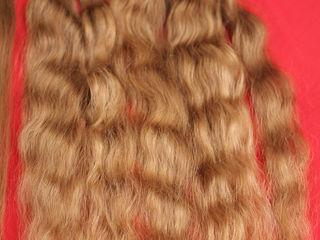 Волосы- куплю. Дорого!!!