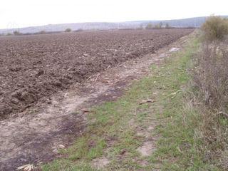 Vindem 1 ha de teren agricol 2000 euro