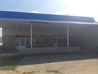 Vinzare spatiu comercial in Satul Pelivan