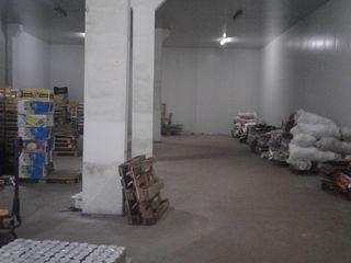 Продажа промышленного холодильного склада общей площадью 1200 кв.м.!