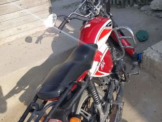 Viper RX