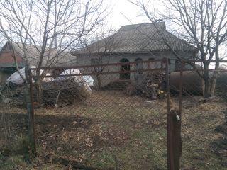 Se vinde casa pe pamint in s. Corjova, r.Criuleni