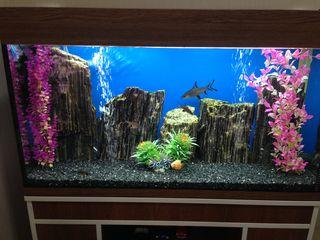Curatenie in akvarium !!! чистый аквариум !!! изготовление, ремонт !!!