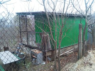 Дачный участок с летним домиком на окраине Вадул луй Вод.недалеко от Днестра. Цена 6500 евро.