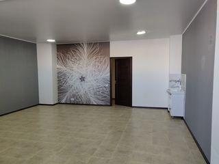 CHIRIE, SPATIU COMERCIAL BOTANICA, 44 m2