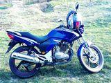 Viper orox gt 200