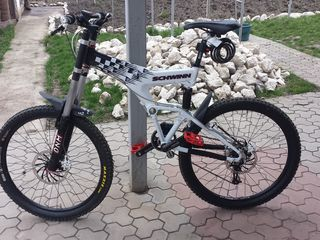 Schwinn Carbon S (Downhill)