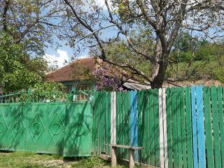 Casa (122 m.p., pe 16 sote) + 2 terenuri extravilan (27 sote), 60 km de la Chisinau.