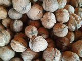 продам не чищеный цэлый орех читайте внимательно