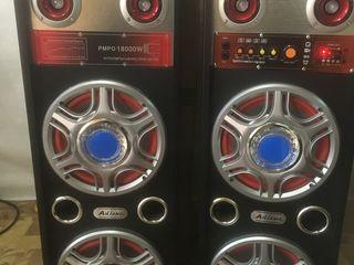 Profesionall sound sistem 2200 lei cu Bluetooth  !!! 600 W  !!!