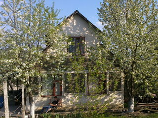 Продаю дачу: дом и садовый участок