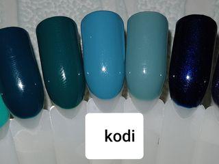 Vind oja gel Kodi si gel color Le Vole!!! Preț simbolic!