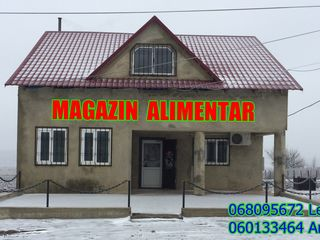 Magazin-Alimentar (Bar)