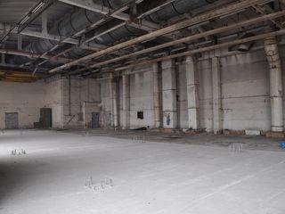Incapere comerciala cu o suprafata de 2000 m2; pretul e de 140 euro/m2