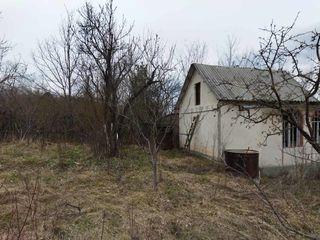Дачный участок в лесу (Иванча-Пересечина)
