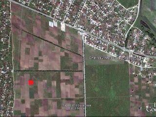 Teren agricol in Chetrosu, aproape de intovarasirile pomicole