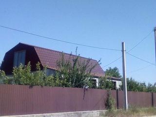 продается дом с виноградником