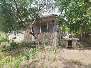 Продается дом в селе!