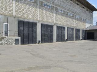 Depozit spre chirie. 230 m2. Alba - Iulia