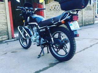 Wolf Motors 125