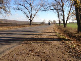 110 hectare pe traseul hincesti-cimislia la 2 km de hincesti