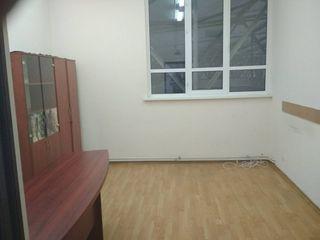 Офисы от 9 квм до 235 квм. Реклама на здании бесплатно