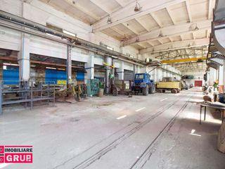 Spatii industriale si depozitare in  Anenii Noi
