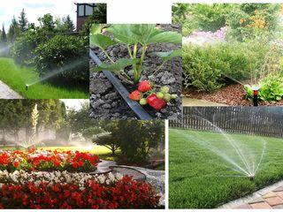 """Системы автоматического полива газонов, клумб, огорода! (""""rain bird"""" - качество, которое выбирают!)"""