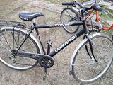 Biciclete -Tricicleta